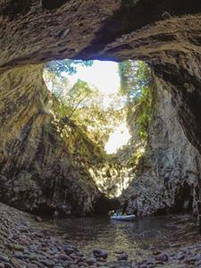 Explore New Zealand nature in the Coromandel Ocean Breeze
