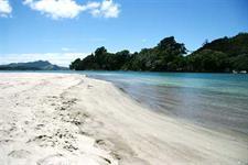 Buffalo Beach in Nearby Whitianga Ocean Breeze