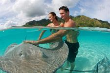 d - IC Moorea-Ray Feeding Excursion2