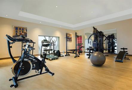 Gym Swiss-Belhotel Bogor