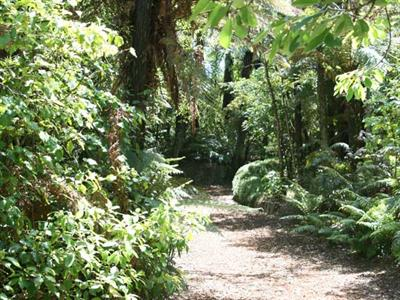 Nestled in the heart of native bush