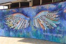 Discover Vibrant Tauranga Harbour City Motor Inn Tauranga Motel