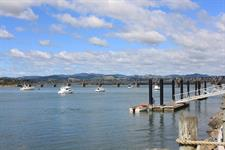 Explore The Harbour In Tauranga