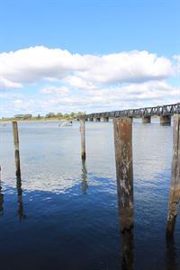 Peaceful Tauranga Harbour City Motor Inn Tauranga Motel