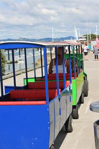 Take The Kids For A Ride Along Tauranga Harbour