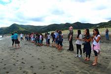Hawaiian Group_Piha beach TIME Unlimited NZ Tours