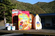 ID10152Pic101 Wellington's Kiwi Holiday Park