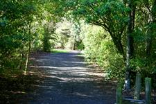 ID10154Pic101 Wellington's Kiwi Holiday Park