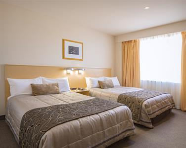 DH Palmerston North - Tower Standard Twin UC2020