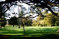 ID10160Pic101 Wellington's Kiwi Holiday Park