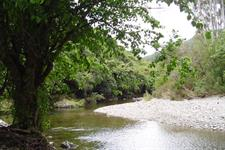 ID10177Pic101 Wellington's Kiwi Holiday Park