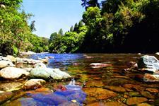 ID10182Pic101 Wellington's Kiwi Holiday Park