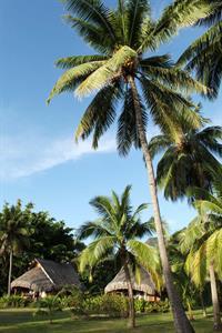 1a - Sofitel Moorea Ia Ora Resort - Luxury Garden Sofitel Moorea Ia Ora Beach Resort