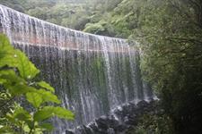 Harcourt Cannons Point Weir Wellington's Kiwi Holiday Park