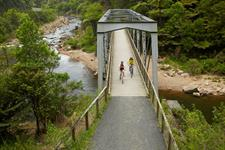 Hauraki Rail Trail Bridge