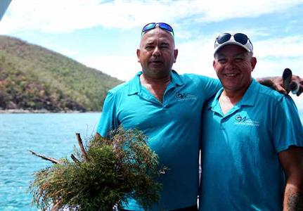 Cultural Tours