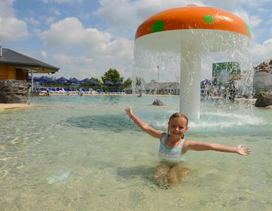 The Swimming Pools Giant Mushroom Lake Taupo Holiday Resort