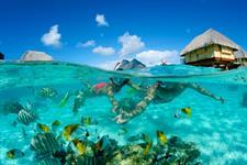 Bora Bora Water Activities - Tahiti Pearl Beach Resort - Snorkeling Bora Bora Pearl Beach