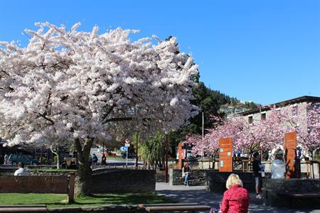 Spring in QT Villa del Lago