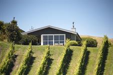 Villa from vineyard