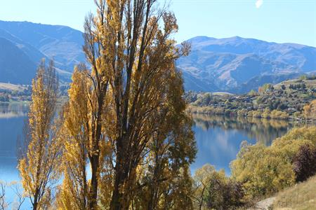 Autumn Lake Hayes 2 2017 Villa del Lago