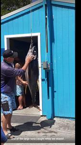 Tuna Whatuwhiwhi Top 10 Holiday park