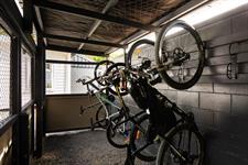 Bikes Paihia Top 10